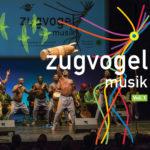 Zugvogelmusik Vol.1, ab 14.09. im Handel